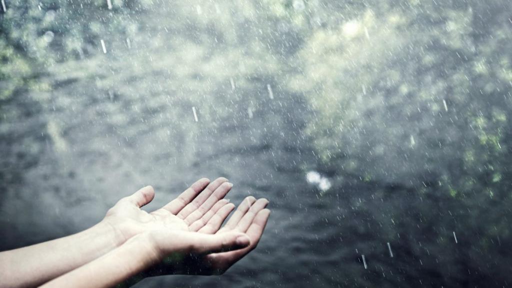 Цыганский сонник к чему снится моросящий дождь?