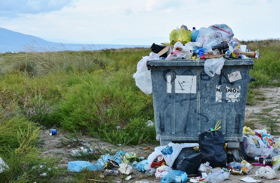 мусорка сонник