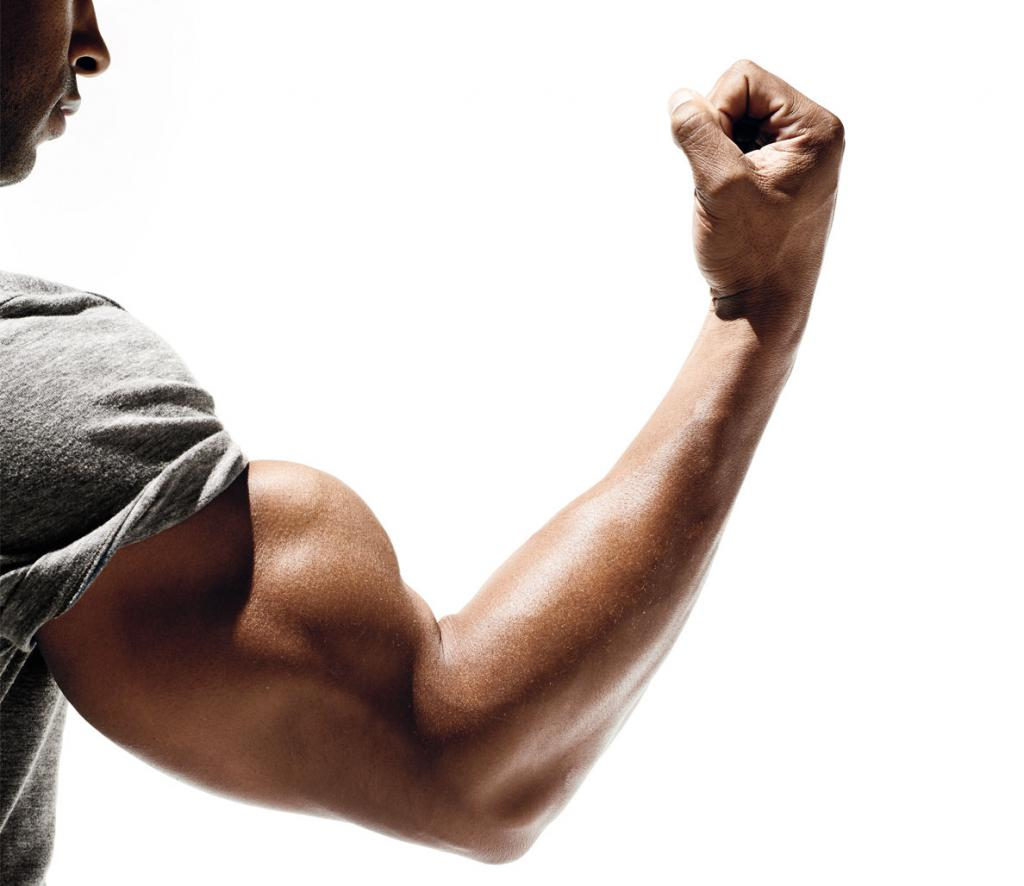 Мускулы на руке
