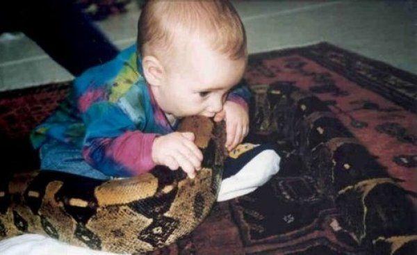 Съесть рептилию