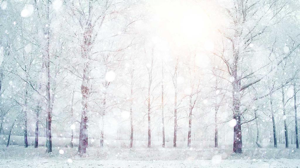 К чему снится зима летом: значение и толкование сна
