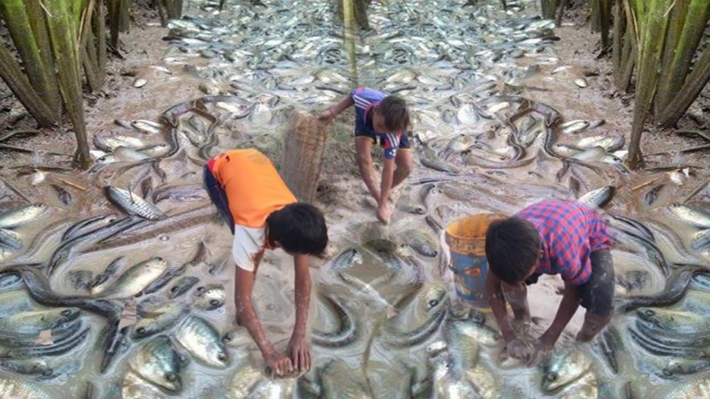 Сонник брать рыбу руками
