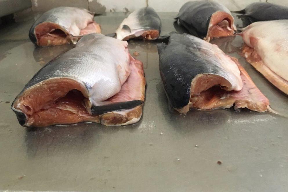 Оттаявшая рыба без головы